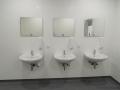 Elmshorn, Lebensmittelproduktion, Saubere Wände im WC Bereich